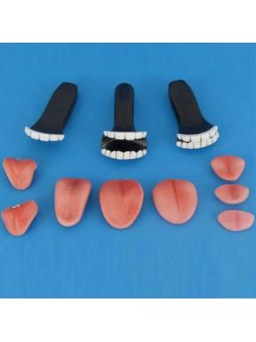 Kit de Dents et langues (Résine)