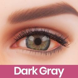 Gris foncé (Dark Gray)